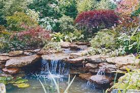 Pond Landscaping Ideas Amazing Backyard Pond Design Ideas Rilane
