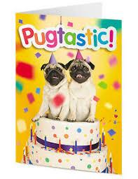 pugtastic two funny cute pug dogs in a birthday cake u2013 happy
