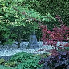 Top 15 Oriental Garden Design Ideas Easy Diy Decor Project For Diy Garden Design