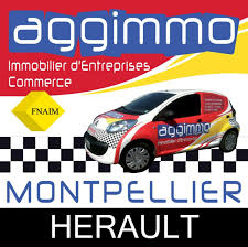 location bureau montpellier location bureau montpellier hérault 34 12 m référence n 907