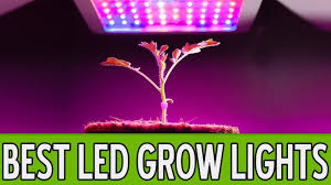 best led weed grow light best led grow lights for weed 2018 reviews by experts in growing