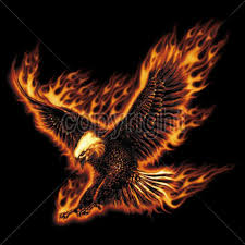 41 best bald eagle tattoo with fire images on pinterest eagle