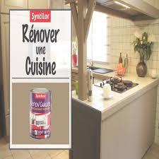 peinture lessivable cuisine peinture renov cuisine syntilor avec peinture lessivable cuisine