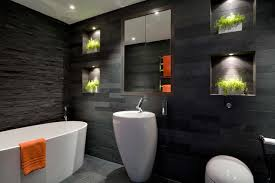 Bathroom Interior Design Modern Toilet Houzz