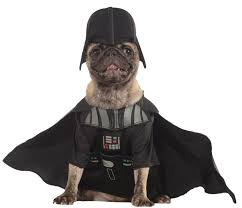 halloween costumes at amazon amazon com rubies costume star wars collection pet costume x