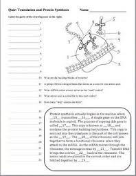 Dna Rna And Protein Synthesis Worksheet Dna Deoxyribonucleic Acid Rna Protein Synthesis Quizzes Set Of