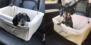 Window Seats For Dogs - travelling pooch booster seat