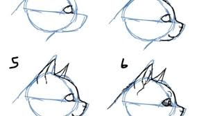 how to draw a cat head drawing on flipboard drawing pencil