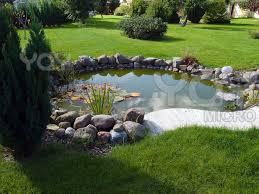 Fish For Backyard Ponds 17 Best Ponds Images On Pinterest Fish Ponds Backyard Ponds And