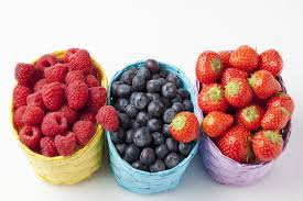 fructose free diet