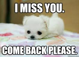 Funny I Miss You Meme - i miss you come back please i miss you quickmeme