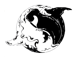 dolphins yin yang aqua tattoo real photo pictures images and