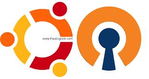 how to build an open vpn server on ubuntu 16 paul ligocki