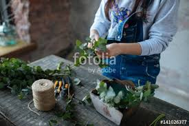 Putting Roses In A Vase Female In Gray Blouse And Jeans Make A Bouquet Over Gray
