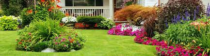 R R Landscaping by About R U0026r Grass Cutting Service Lawn Care Company In Irving Tx