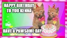 Make Your Own Cat Meme - oreo cat meme generator imgflip memes i ve made pinterest