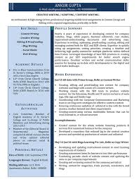 Profile Sample Resume by Writers Resume Example Sample Software Engineer Resume Software