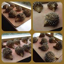autumn kids craft hedgehogs from clay and sunflower seeds