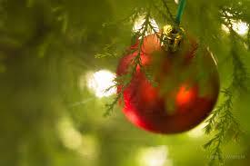caregivers help elderly with christmas decorations u2013 houston