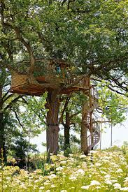 2245 best tree house images on pinterest treehouses treehouse