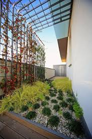 Court Yards Decorating Small Courtyard With Green Plants 3 Good Ideas For