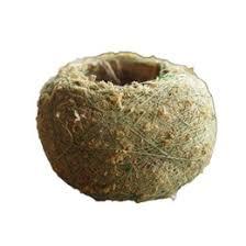 moss balls online marimo moss balls for sale