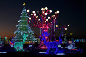 christmas light park near me huge new holiday light displays headed for dallas arlington and