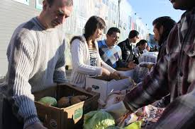 your bay area guide to volunteering and donations bay