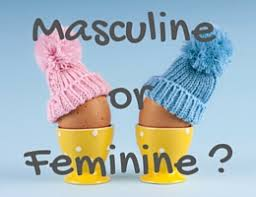 masculine or feminine telling the gender of french nouns