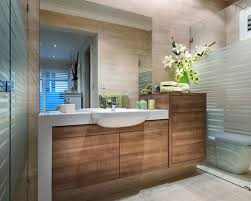 Bathroom Cabinet Design Shallow Vanity Design Ideas Amusing Designs Of Bathroom Cabinets