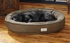 memory foam dog bed wraparound dog bed with memory foam orvis