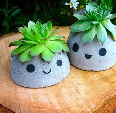 diy cute concrete succulent planter home designing