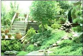 Landscaping Ideas For Slopes Gardening On Steep Slopes Mississippi State University Extension
