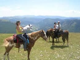chambre d hote equitation randonnées équestres à vérimande picture of chambre d hotes st