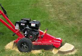 stump grinder rental near me why not to rent a stump grinder forest raleigh tree