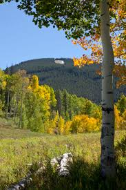 vail thanksgiving 14 best fall colors in vail images on pinterest skiing ski