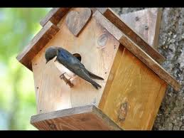 how to make a birdhouse out of wood diy birdhouse easy