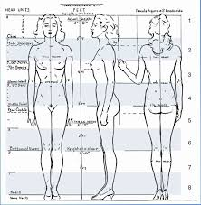 Female Body Anatomy Drawing 133 Best Anatomy Proportions Images On Pinterest Drawing Art