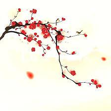 cherry tree wallpaper cherry blossom tree wallpaper cherry blossom