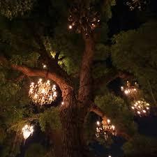 tree chandelier chandelier tree