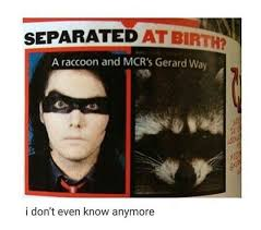 Gerard Way Memes - 28 my chemical romance memes to make up for the fact that we re
