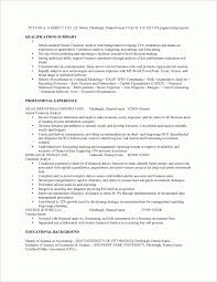 Recommended Resume Font College Scholarship Resume Examples Best Resume Collection