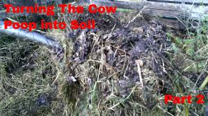 cow manure compost pile turning into soil youtube