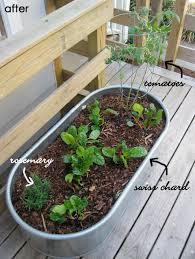 galvanized water trough planters u2022 nifty homestead