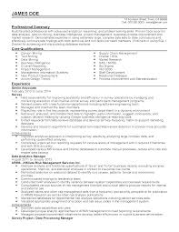 Sample Objectives In Resume For Service Crew by Professional Data Analytics Manager Templates To Showcase Your