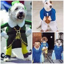 Human Dog Halloween Costumes Funny Pet Halloween Costumes