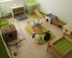 How To Build An Indoor Rabbit Hutch Rabbitat Heaven Ideas To Make Your Rabbit U0027s Living Space Amazing