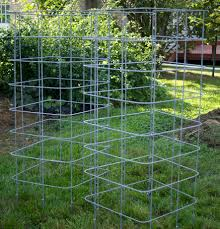 the most reliable tomato cages trellises tomato cage gardens