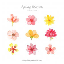 free flowers flower vectors photos and psd files free