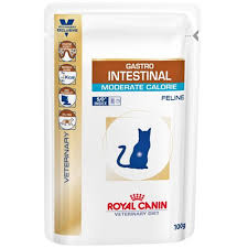 royal canin cat food gastrointestinal moderate calorie buy online